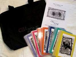 Image of components of a 6-group Plant Cell Mitosis Sequencing Kit